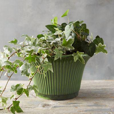 Købenler Green Glaze Pot