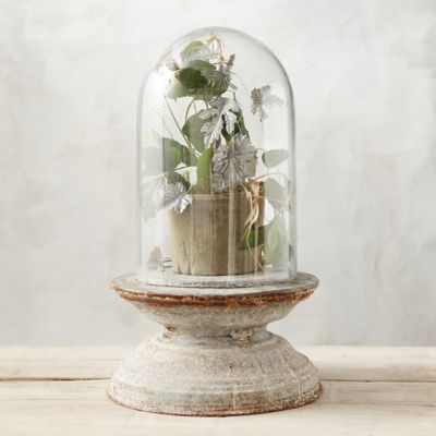 Weathered Iron Pedestal Cloche