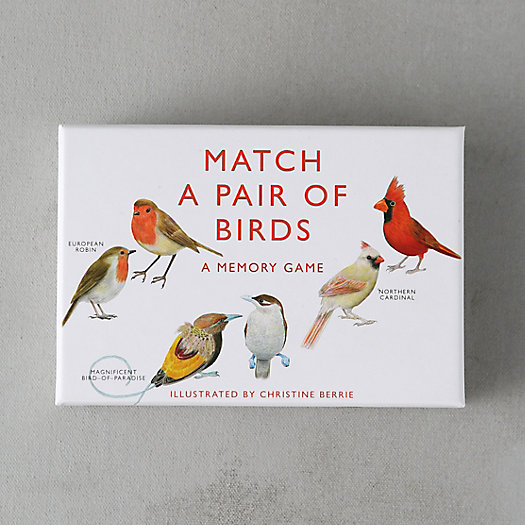 View larger image of Match A Pair of Birds