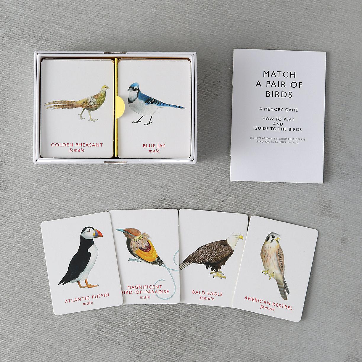 Match A Pair of Birds - Terrain