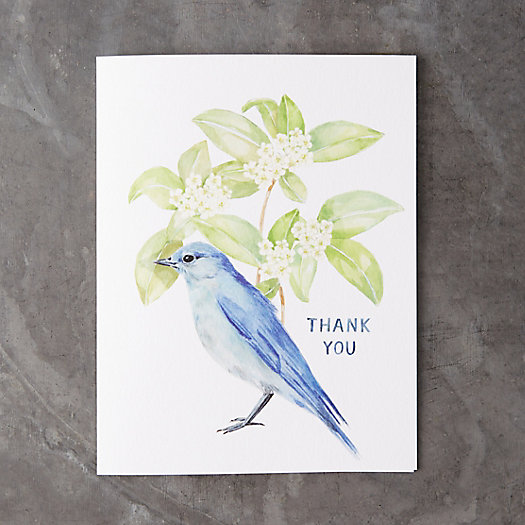 View larger image of Bluebird Thank You Card