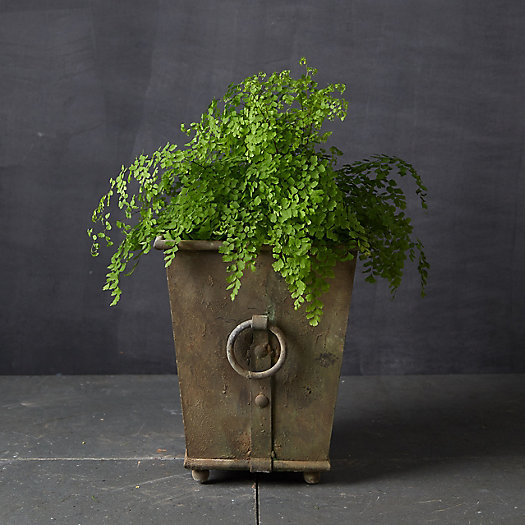 View larger image of Ring Handle Iron Taper Planter