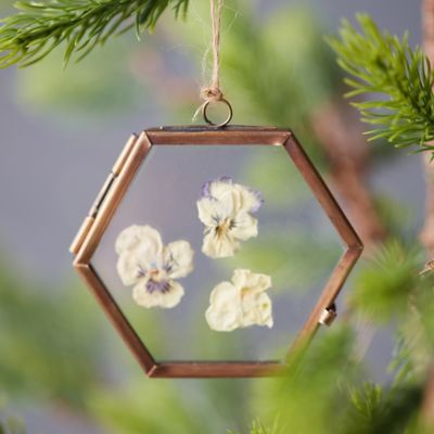 Botanical Frame Ornament, Hexagon