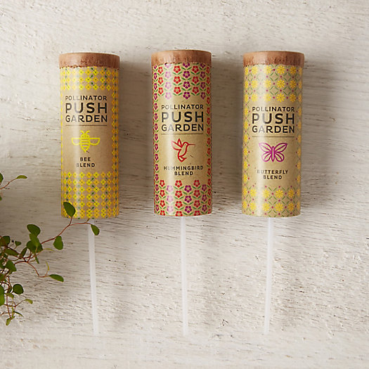 View larger image of Pollinator Garden Seed Push Pops, Set of 3