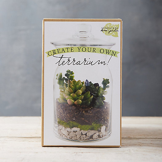 View larger image of Create Your Own Terrarium Kit