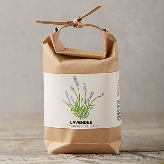 View larger image of Lavender Grow Bag