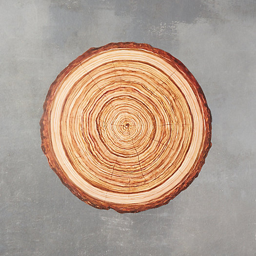 View larger image of Wood Slice Paper Placemats, Set of 12