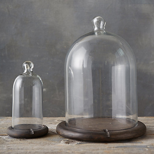 View larger image of Black Wood + Glass Cloche