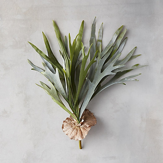 View larger image of Faux Staghorn Fern Pick