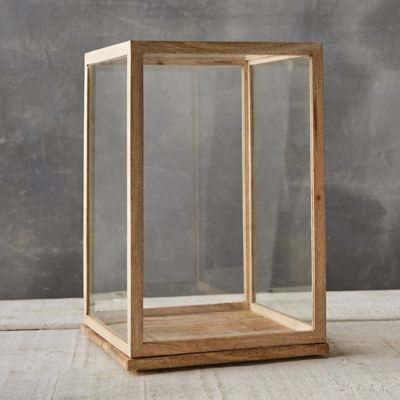 Bleached Display Case