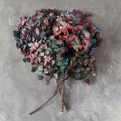 Dried Blue Hydrangea Bunch