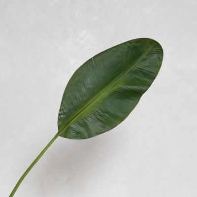 Faux Banana Leaf