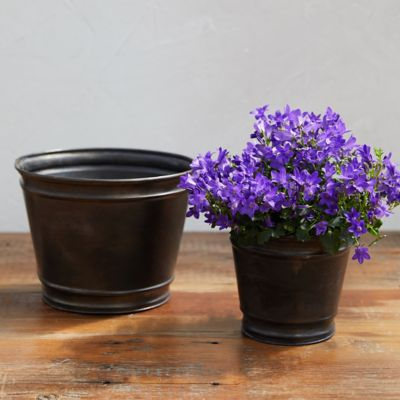 Metal Edged Pot