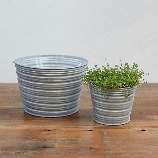 View larger image of Little Stripes Pot