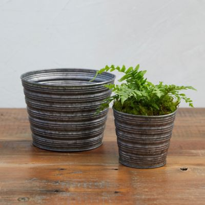 Little Stripes Pot