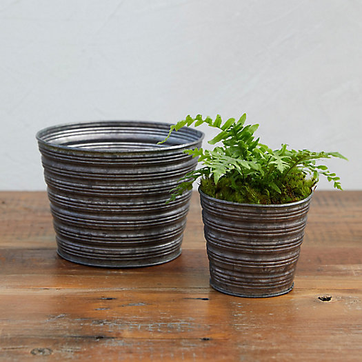 View larger image of Little Stripes Pot