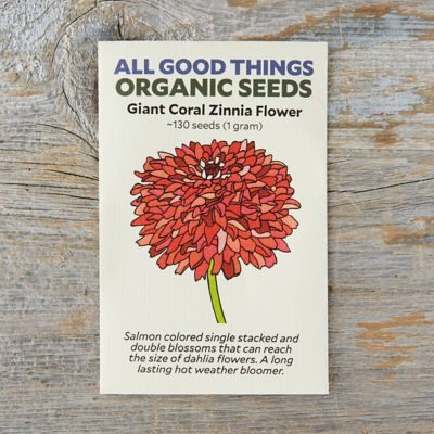 Giant Coral Zinnia Seeds