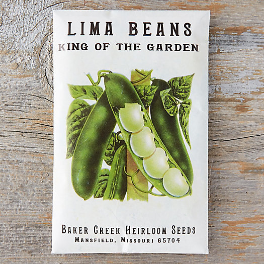 View larger image of King of the Garden Lima Bean Seeds