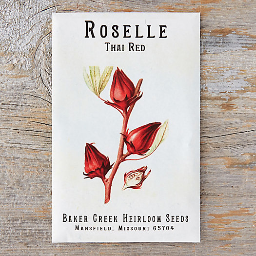 View larger image of Thai Red Roselle Seeds
