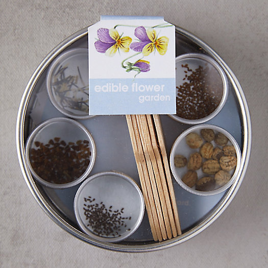 View larger image of Pocket Garden Seed Kit, Edible Flowers