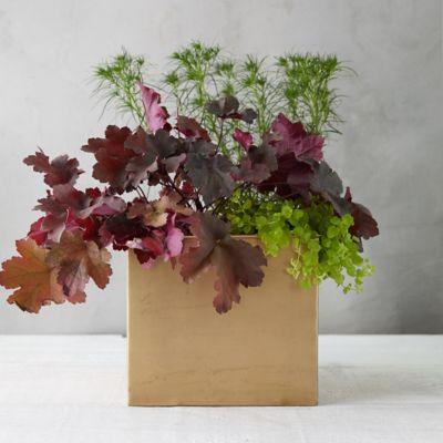 Habit + Form Square Planter