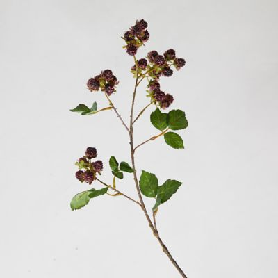 Faux Red Raspberry Branch