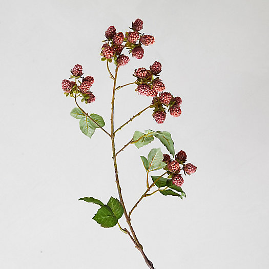 View larger image of Faux Red Raspberry Branch