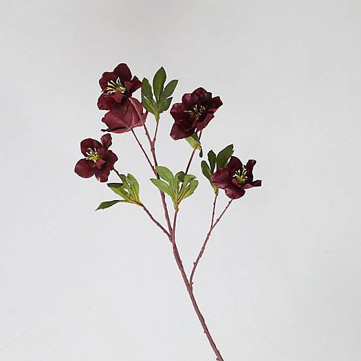 View larger image of Faux Burgundy Hellebore Spray