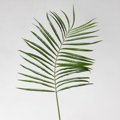 Faux Palm Leaf