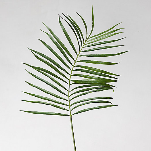 View larger image of Faux Palm Leaf
