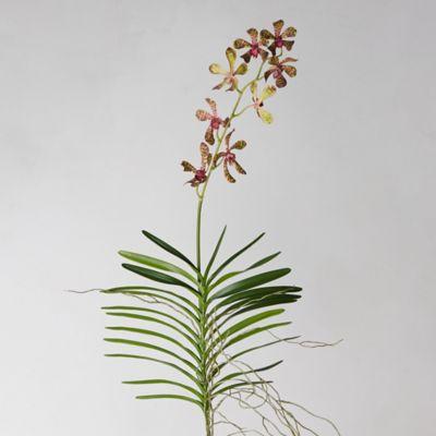 Faux Bordeaux Orchid Stem