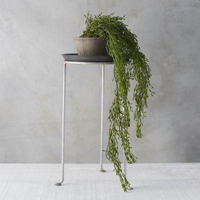 Faux Hanging Succulent