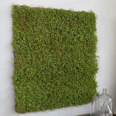 Faux Sheet Moss