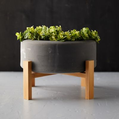 Low Ceramic Planter + Wood Stand
