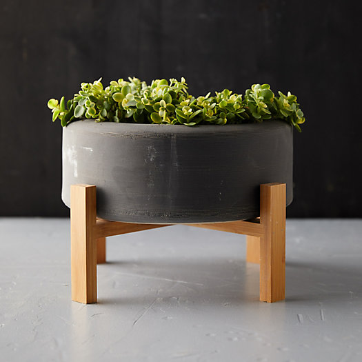 View larger image of Low Ceramic Planter + Wood Stand