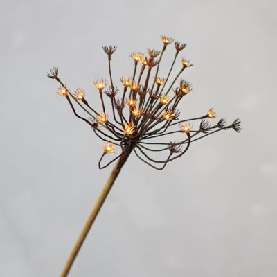Pre-Lit LED Faux Hogweed Stem