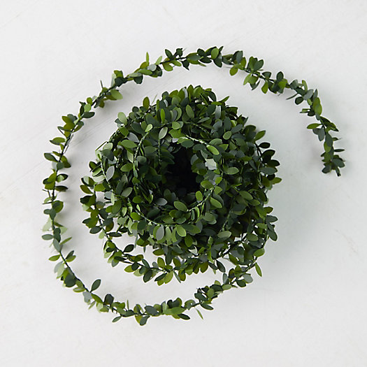 View larger image of Boxwood Ribbon