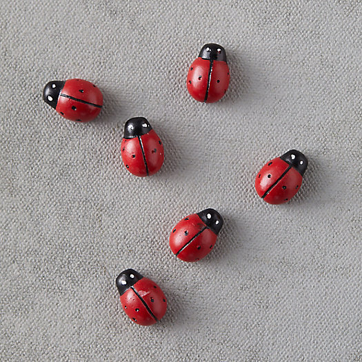 View larger image of Ladybug Magnets