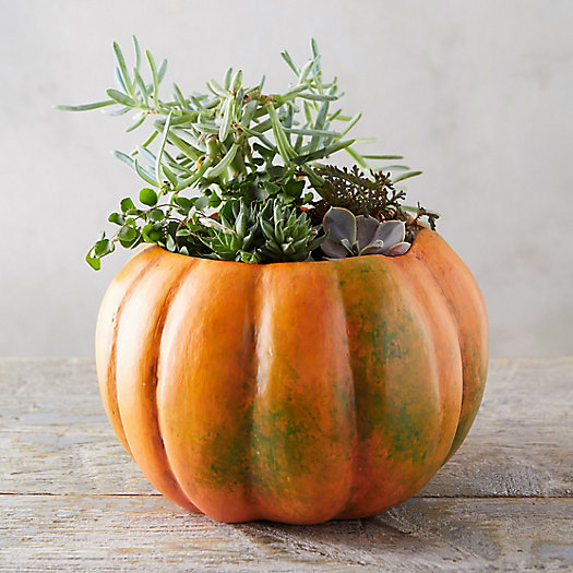 View larger image of Pumpkin Pot, Large
