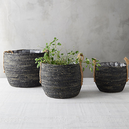 View larger image of Cornleaf Basket Planter