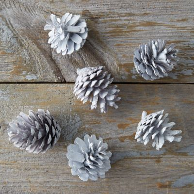 Waxed Pinecones