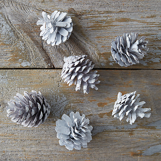 View larger image of Waxed Pinecones