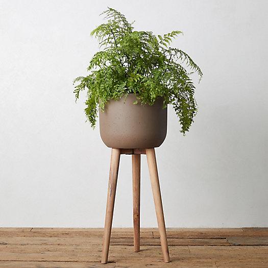 View larger image of Wood Leg Fiber Stone Pot