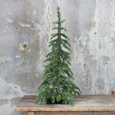 Faux Pre-lit LED Alpine Tabletop Tree