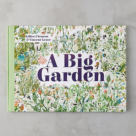View larger image of A Big Garden