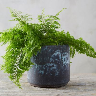 Distressed Metal Drop Pot