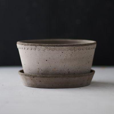 Bergs Scallop Bowl + Saucer