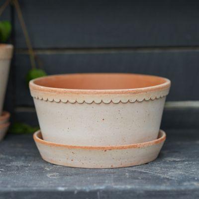 Bergs Scallop Bowl + Saucer Set