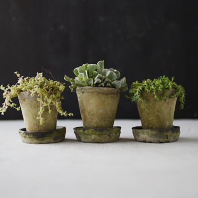Earth Fired Clay Herb Pot + Saucer, Set of 3