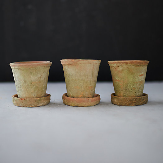 View larger image of Earth Fired Clay Herb Pot + Saucer, Set of 3